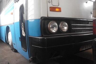 Автобус: Ikarus 256.75 (пасажирський) 1993 р.в, білого кольору, ДНЗ: 5612АС, VIN: TPA256T2AP2SU0207