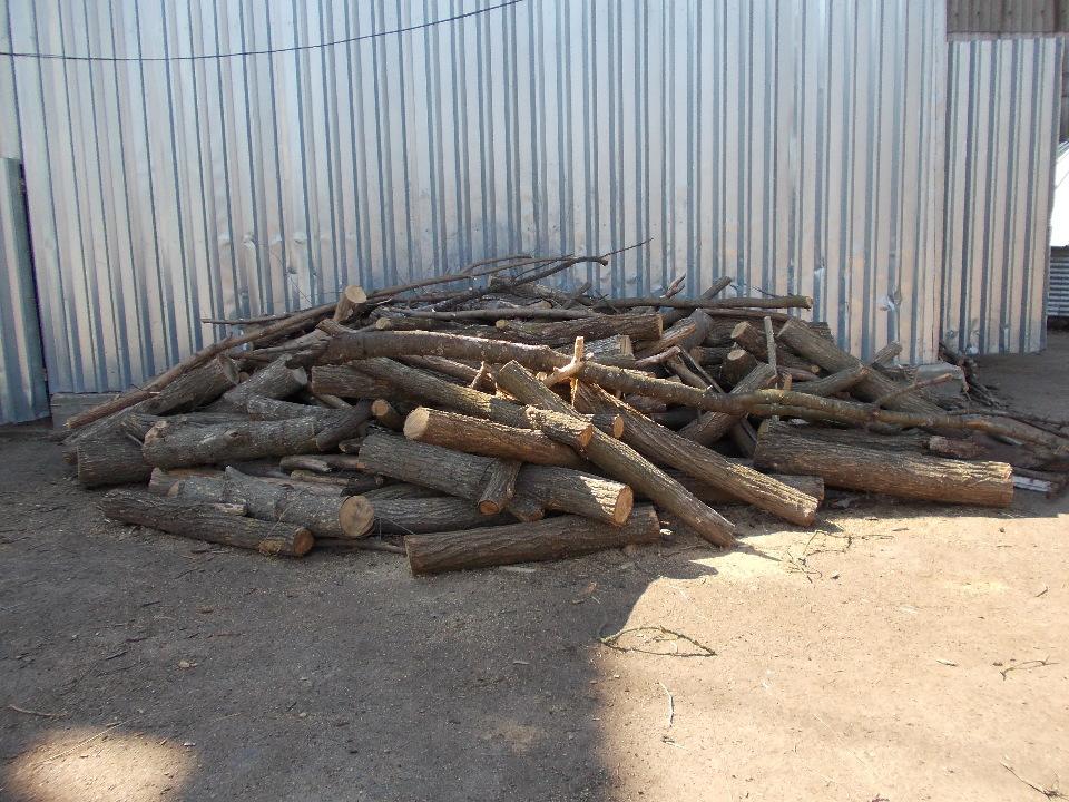 Частини розпиляних дерев породи