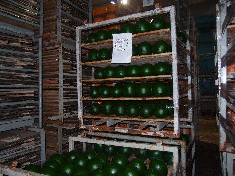 Сир «Натвел» (в процесі дозрівання), 3500 кг.