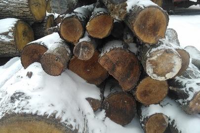 Напиляні колоди деревини породи вільха у кількості 40 шт.
