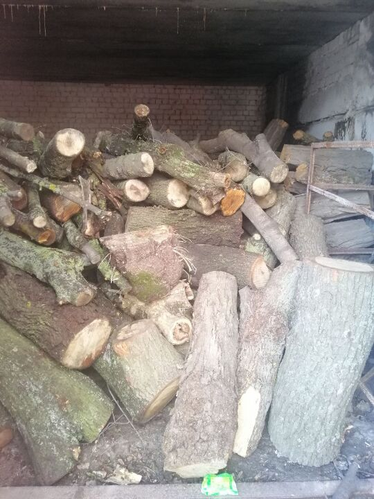 Напиляні колоди дерев