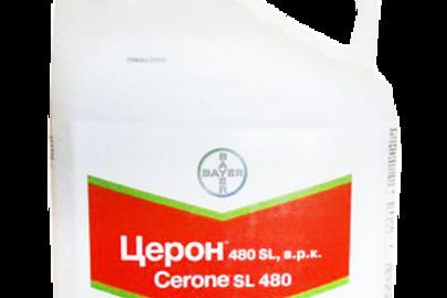 Засоби захисту рослин: регулятор росту Церон